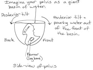 pelvic tilt bowl of water